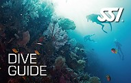 Dive-guide-card