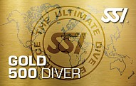 Ssi-gold500-card